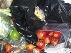 "Autumn ""sell by""! Fruit in open in dustbin near shop"
